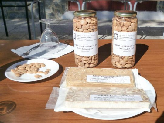 Almendras fritas y turrón de la variedad del CEBAS-CSIC, Antoñeta.