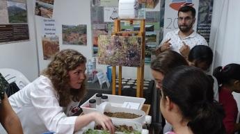 Elena explicando distintas coberturas de suelo y su influencia en la escorrentía